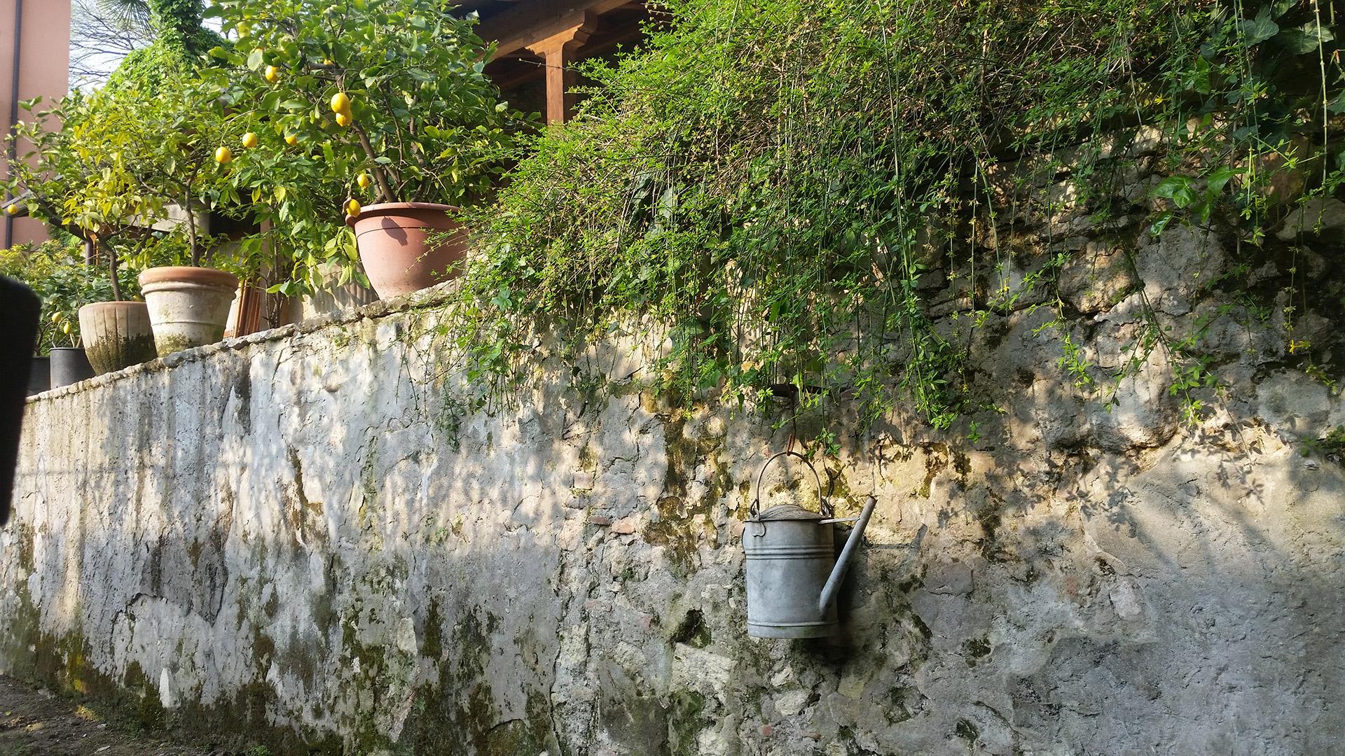 Giardini Aperti Veronetta