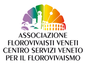 Logo - centro servizi